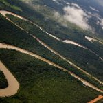 A consciência da gravidade da crise cultural e ecológica precisa traduzir-se em novos hábitos