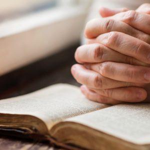 A Bíblia, semente de vida e de transformação