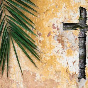 Vivendo a Semana Santa na sua essência e no seu sentido salvífico