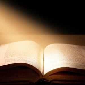 Reflexão: Evangelho de Marcos